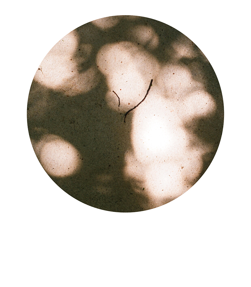 PEQUENA-LISBOA6